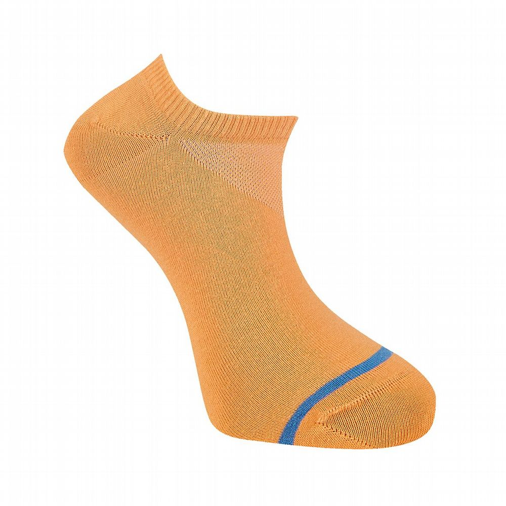 Men's Cotton Socks  - Sun Sock - Apricot